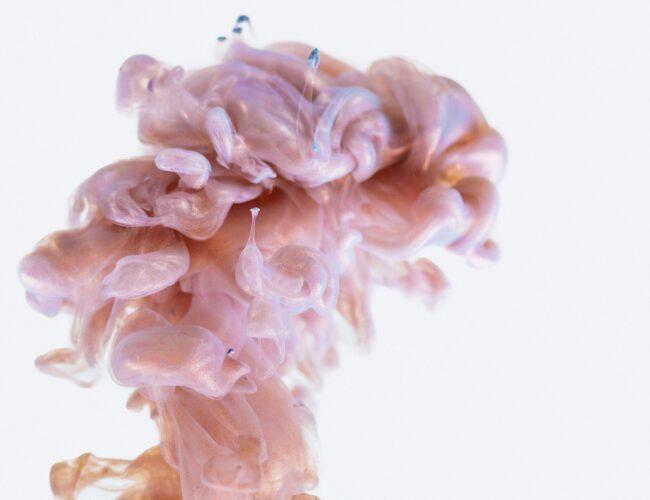 nuestro cerebro durante el embarazo